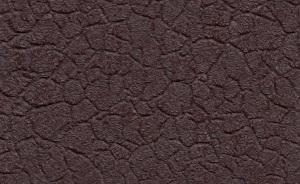 Тёмно-коричневый крокодил