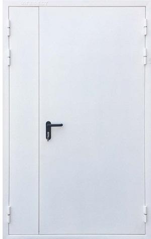Противопожарная дверь №2